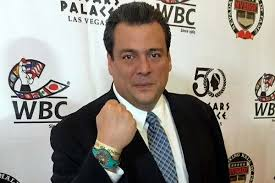 """Президентът на WBC: Головкин доминира в двубоя с Канело, би се в """" мексикански стил """""""