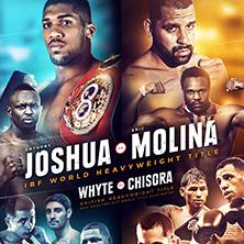 joshua-vs-molina-tickets